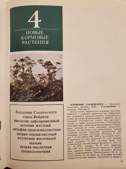 Страница из книги: Новые кормовые растения (в том числе Борщевик Сосновского)