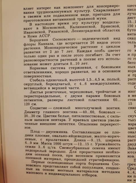Страница книга: описание борщевика сосновского