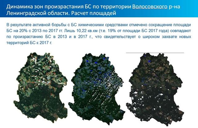 Динамика распространения борщевика на территории Волосовского района (лен. область)